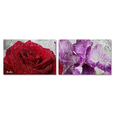 Ready2hangart Roses are Red, Violets are Blue II' 2 Piece Graphic Art on Canvas Set