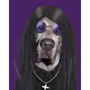 Empire Art Direct Pets Rock  ''Metal'' Graphic Art on Wrapped Canvas