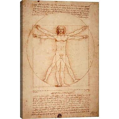 iCanvas 'Vitruvian Man 1492' by Leonardo Da Vinci Graphic Art on Canvas; 26'' H x 18'' W x 1.5'' D
