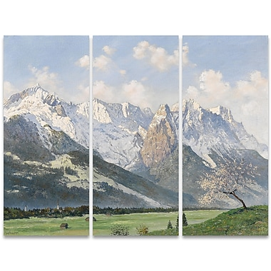 Designart Glacial Mountains and Green Grass 3-Panel Canvas Art Print, (PT4006-36-28)