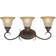 Forte Lighting 3-Light Vanity Light