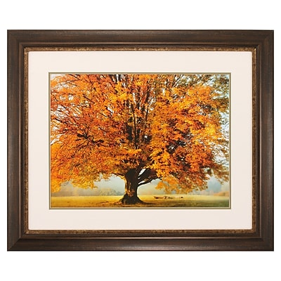 Propac Images Autumns Passion Framed Photographic Print
