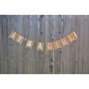 Rustic Chic Boutique It's a Girl! Banner