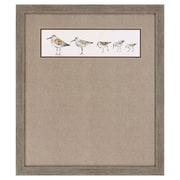 Propac Images Pebbles and Sandpipers IX Framed Graphic Art