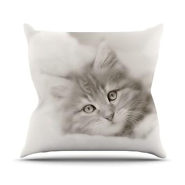 KESS InHouse Main Coon Kitten Throw Pillow; 18'' H x 18'' W
