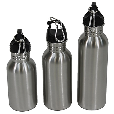 Cathay Importers Stainless Steel Water Bottles With Carabiners, 3/Set