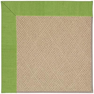 Capel Zoe Machine Tufted Grass/Brown Indoor/Outdoor Area Rug; Rectangle 12' x 15'