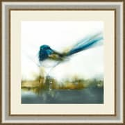 Ashton Wall D cor LLC Birds 'Little Blue II' Framed Painting Print