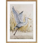 Art Virtuoso Heron Sanctuary by Tim O'Toole Framed Painting Print