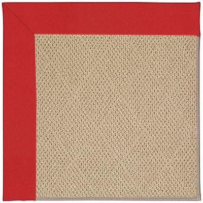 Capel Zoe Machine Tufted Red/Beige Indoor/Outdoor Area Rug; Rectangle 4' x 6'