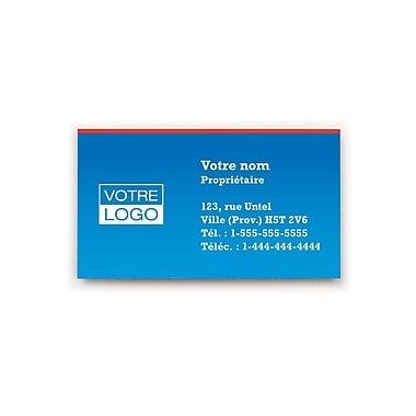 Staples® – Cartes professionnelles le jour même, recto simple, couleur mate, ens./100 cartes