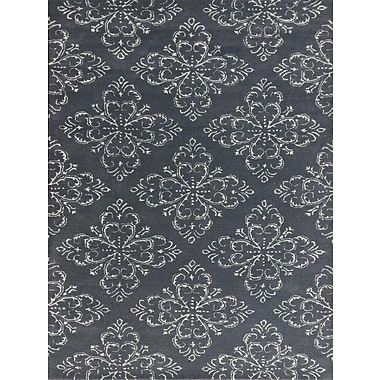 AMER Rugs Serendipity Hand-Tufted Gray Stone Area Rug; Rectangle 2' x 3'