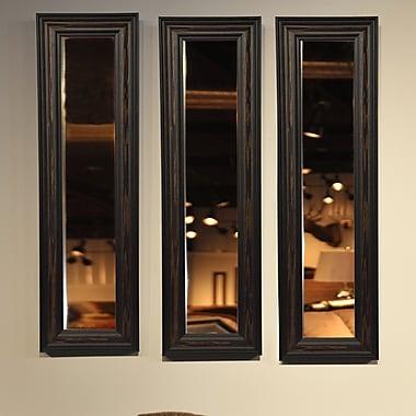 Rayne Mirrors Molly Dawn Rayne American Walnut Mirror Panel; 8 x 34