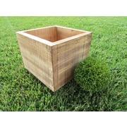 Established 98 Planter Box