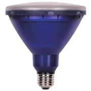 Westinghouse Lighting 15-Watt (100-Watt) Colored PAR38 Reflector LED Light Bulb