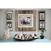 Beach Frames Double Picture Frame; Cream / Brown