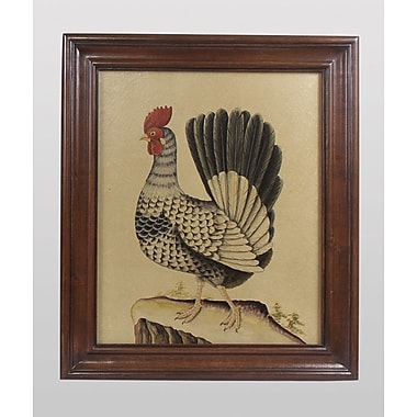 AA Importing Rooster Framed Painting Print