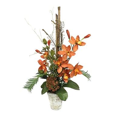 Dalmarko Designs Tropical Orange Orchids