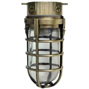 Woods L1706AB Traditional 100W Incandescent Weather Industrial Light, Ceiling Mount, Antique Brass