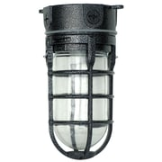 Woods L1706BLK Traditional 100W Incandescent Weather Industrial Light, Ceiling Mount, Hammered Black