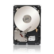Lenovo 600GB 10000 RPM 6GB SAS 2.5IN Hard Drive