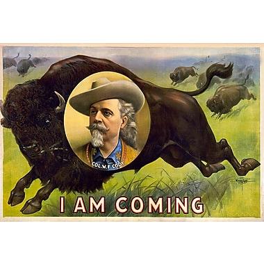 Wallhogs Buell 1900 Colonel W.F. Cody Poster Wall Mural; 40.5'' H x 60'' W