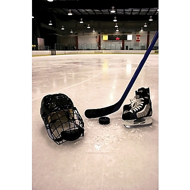 Wallhogs Hockey Equipment II Wall Mural; 60'' H x 40'' W