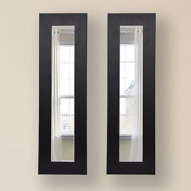 Rayne Mirrors Molly Dawn Mirror Panel (Set of 2); 9.5 X 25.5