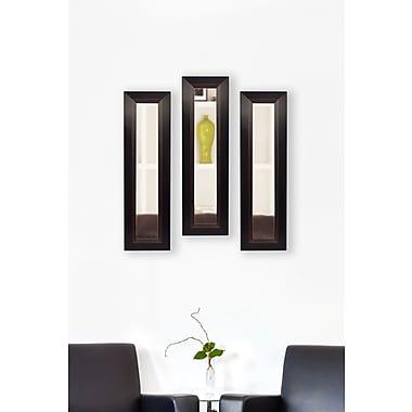 Rayne Mirrors Molly Dawn Brown Lining Mirror Panels (Set of 3); 25.75'' H x 9.75'' W x 0.75'' D