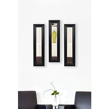 Rayne Mirrors Molly Dawn Solid Black Angle Mirror Panels (Set of 3); 29.5'' H x 15.5'' W x 0.75'' D