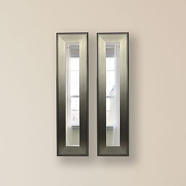 Rayne Mirrors Molly Dawn Brushed Silver Mirror Panels (Set of 2); 22.5'' H x 10.5'' W x 0.75'' D