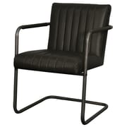 New Pacific Direct Lexie Arm Chair (Set of 2); Vintage Black
