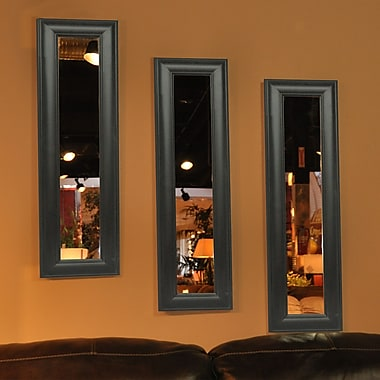 Rayne Mirrors Molly Dawn Rayne Brazilian Walnut Mirror Panel; 11 x 39
