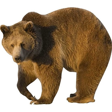 Wallhogs Grizzly Cutout Wall Decal; 31.5'' H x 36'' W