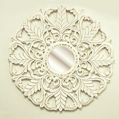 Fetco Home Decor Laun Mirror