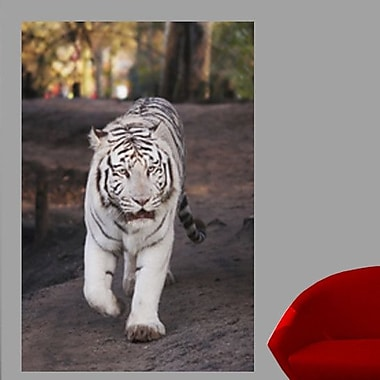 Wallhogs White Tiger Wall Mural; 16'' H x 24'' W