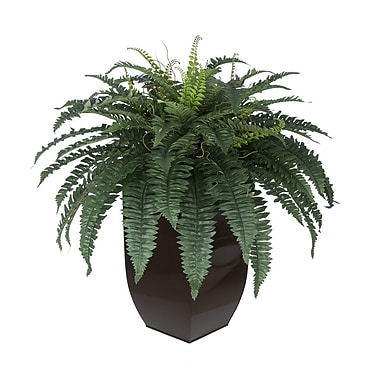 House of Silk Flowers Artificial Fern Floor Plant in Planter; Gloss Brown
