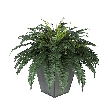 House of Silk Flowers Artificial Fern Floor Plant in Planter; Silver