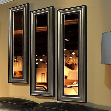 Rayne Mirrors Molly Dawn Antique Silver Mirror Panel; 32.5'' H x 11.5'' W x 1'' D