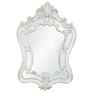 Selections by Chaumont Sandringham Decorative Mirror