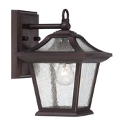Acclaim Lighting Aiken 1-Light Outdoor Wall Lantern; Architectural Bronze
