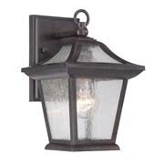 Acclaim Lighting Aiken 1-Light Outdoor Wall Lantern; Black Coral