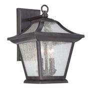 Acclaim Lighting Aiken 2-Light Outdoor Wall Lantern; Black Coral