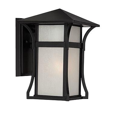 Acclaim Lighting MarbleX - Tahiti 1-Light Outdoor Sconce; Matte Black