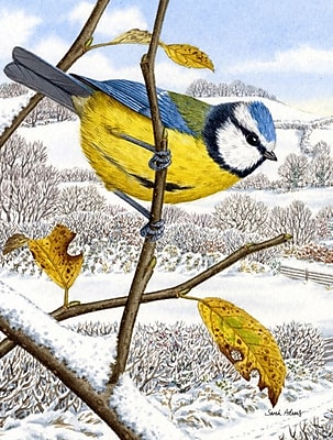 Caroline's Treasures Eurasian Blue Birds Bird Vertical Flag