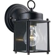 Progress Lighting 1-Light Outdoor Wall Lantern; Black
