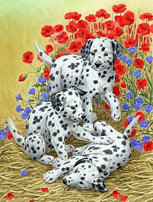Caroline's Treasures Dalmatian Pups Vertical Flag