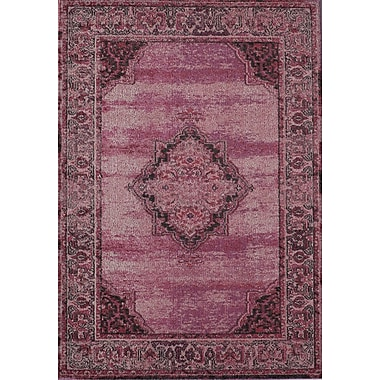 Rugs America Beverly Ophelia Rose Raspberry Area Rug; Rectangle 5'3'' x 7'6''