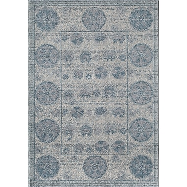 Rugs America Beverly Blue Area Rug; Rectangle 2' x 3'