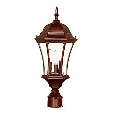 Acclaim Lighting Brynmawr Outdoor 3-Light Lantern Head; Burled Walnut